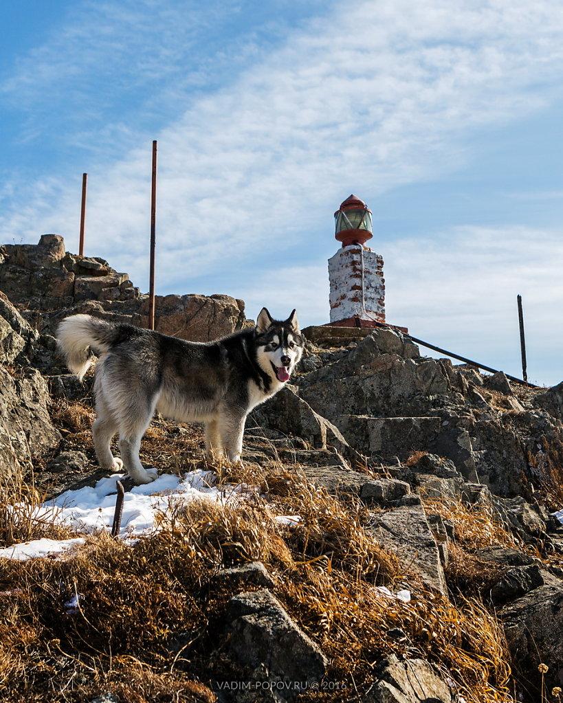 Гамовский маяк